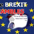 In Out and Shake It All About – More Eeyore than EU