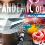 Disease, Pandemics, Fear and Attrition